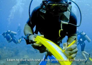 Learn to scuba dive with Dive Dominica