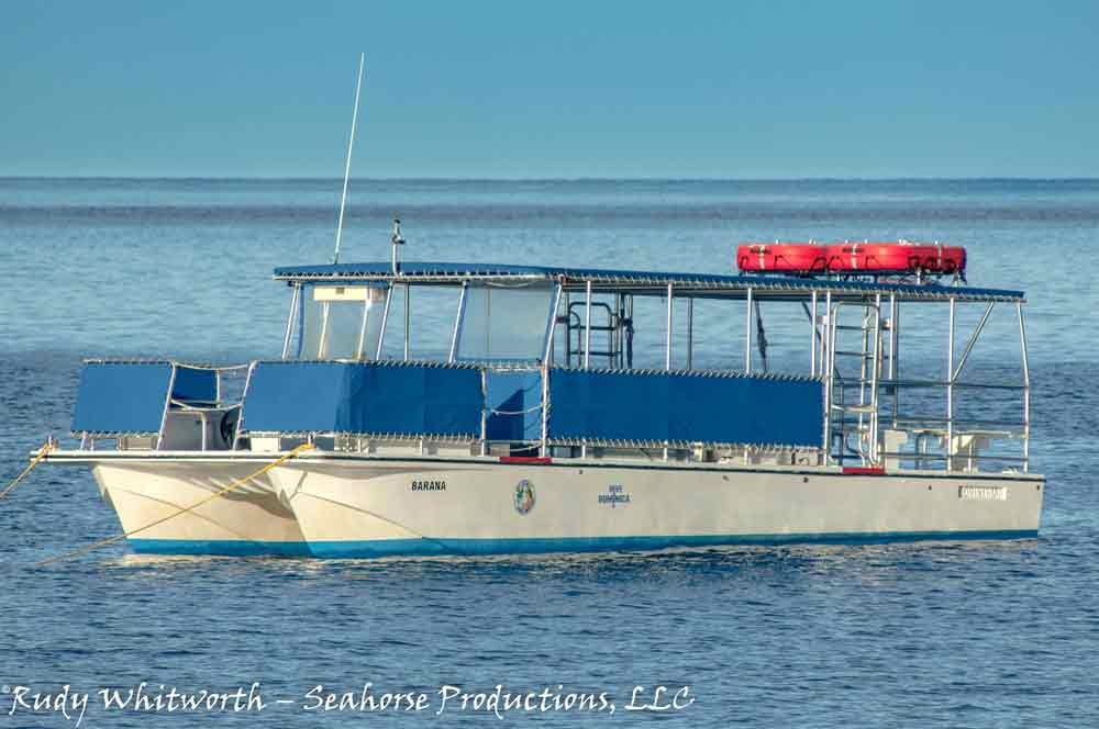 motor vessel Barana