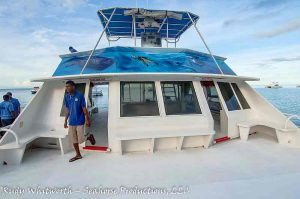 Charter Boat Sting Ray
