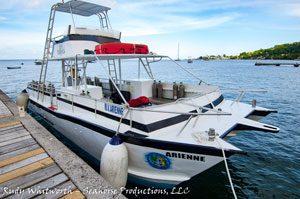 dive dominica dive boat Arienne
